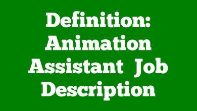 Definition: Animation Assistant  Job Description