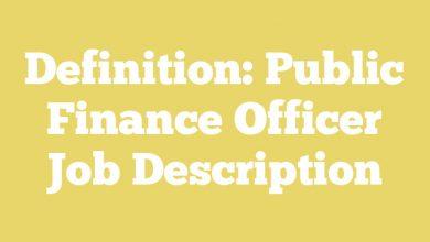 Definition: Public Finance Officer  Job Description